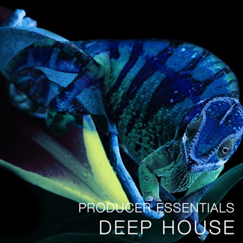 Сэмплы SPF Samplers Producer Essentials Deep House