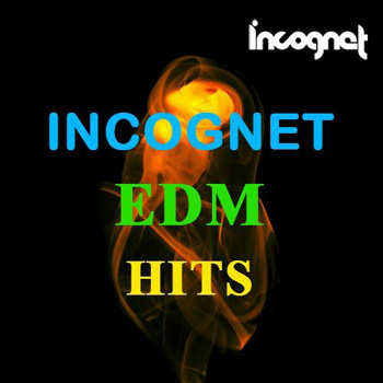 Сэмплы Incognet EDM Hits