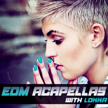 Сэмплы Function Loops EDM Acapellas With Lokka