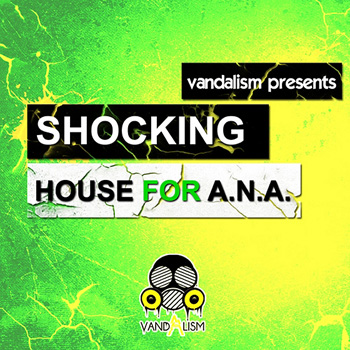 Пресеты Vandalism Shocking House For ANA