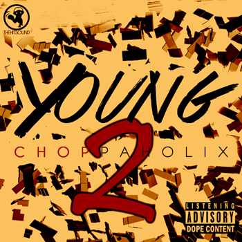 Сэмплы The Hit Sound Young Choppaholix Vol 2