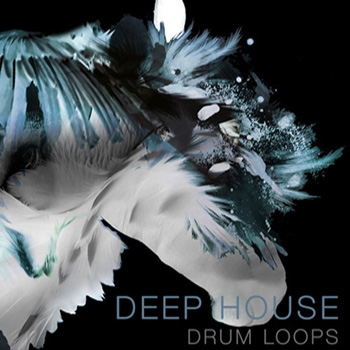 Сэмплы SPF Samplers Deep House Drum Loops