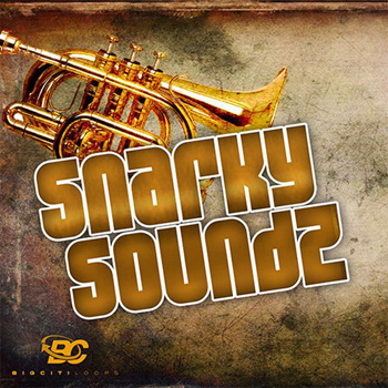 Сэмплы Big Citi Loops Snarky Soundz