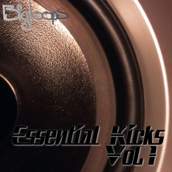 Сэмплы бочек - Bigloops Kick Constructor Essential Kicks Vol.1
