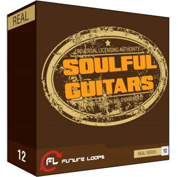 Сэмплы гитары Future Loops Soulful Guitars
