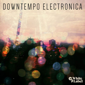 Сэмплы SM White Label Downtempo Electronica