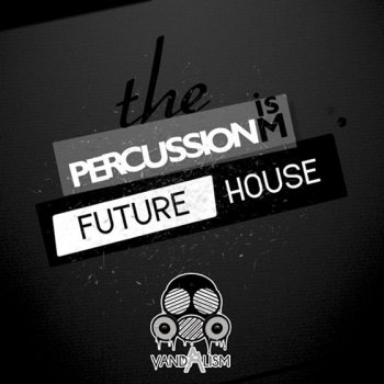 Сэмплы ударных - Vandalism Percussionism Future House