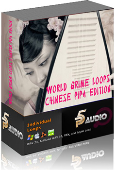 Сэмплы P5 Audio World Grime Loops and Licks Chinese Pipa
