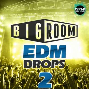 Сэмплы Mainroom Warehouse Big Room EDM Drops 2