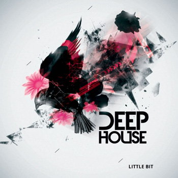 Сэмплы Little Bit Deep House