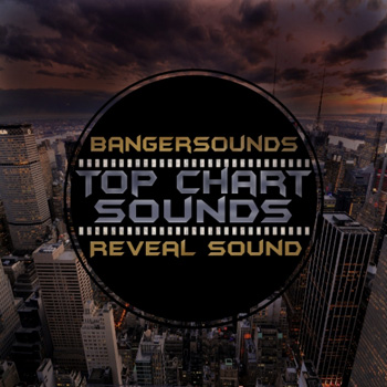 Пресеты Banger Music Records - Chart Top Sounds for Spire