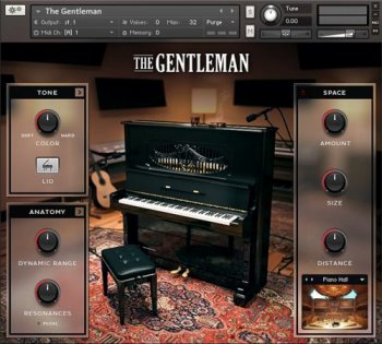 Библиотека сэмплов - Native Instruments The Gentleman v1.2 (KONTAKT)