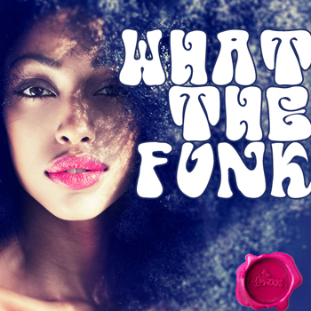 Сэмплы Fox Samples What The Funk