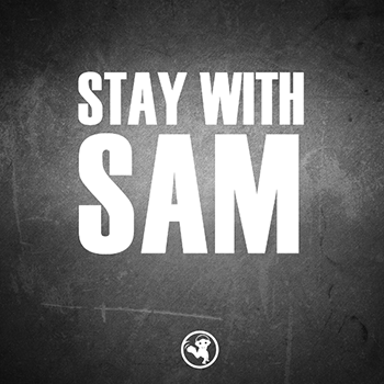 Сэмплы The Hit Sound Stay With Sam