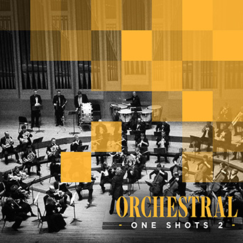 Сэмплы Diginoiz Orchestral One Shots 2