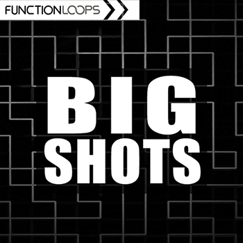 Сэмплы Function Loops - Big Shots