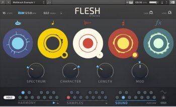 Native Instruments Tim Exile Flesh Synth v1.0.0 (Reaktor 6)