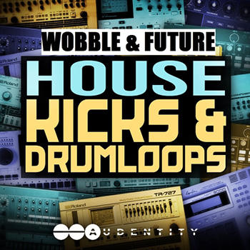 Сэмплы Audentity Wobble and Future House Kicks and Drumloops