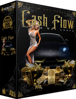 Сэмплы Bang Bang Productions - Cash Flow Vol 1 Construction Kit