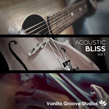Сэмплы Vanilla Groove Studios Acoustic Bliss Vol 1