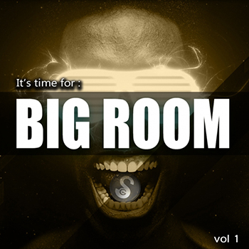 Сэмплы Golden Samples Its Time For Big Room Vol 1