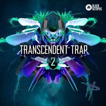 Сэмплы Black Octopus Sound Transcendent Trap 2
