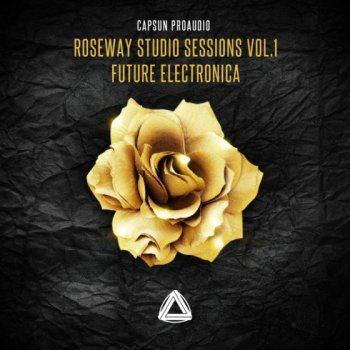 Сэмплы CAPSUN ProAudio - Roseway Studio Sessions Vol.1 - Future Electronica