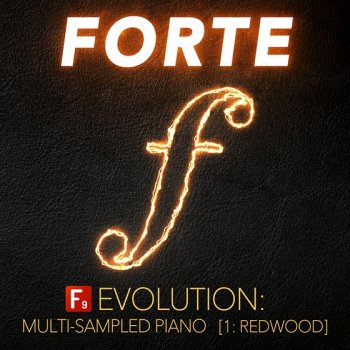 Библиотека сэмплов - F9 Audio F9 Forte Evolution: Redwood Club Piano (KONTAKT)
