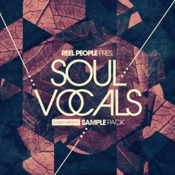 Сэмплы Loopmasters Reel People Present Soul Vocals