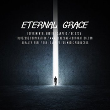 Сэмплы Bluezone Corporation Eternal Grace Experimental Ambient Samples