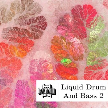 Сэмплы Rankin Audio Liquid Drum and Bass 2