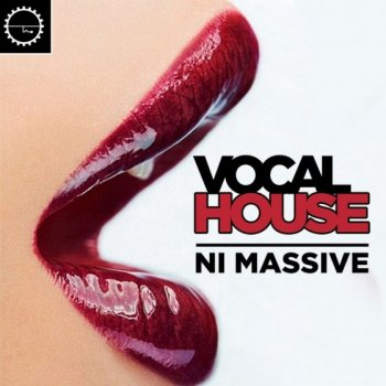 Сэмплы Industrial Strength Vocal House Massive