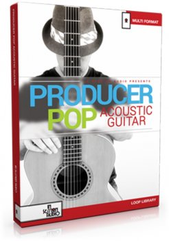 Сэмплы гитары - In Session Audio - Producer Pop Acoustic Guitar