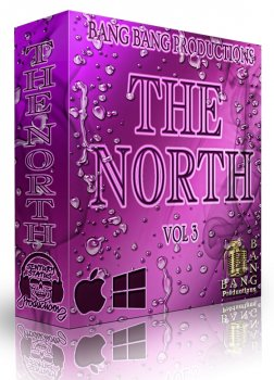 Сэмплы Bang Bang Productions - The North Vol 3