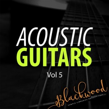 Сэмплы гитары - Blackwood Samples Acoustic Guitars 5