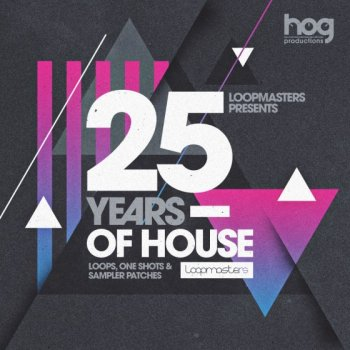 Сэмплы Loopmasters Gianni Bini Presents 25 Years Of House