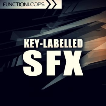 Сэмплы эффектов - Function Loops Key Labelled SFX