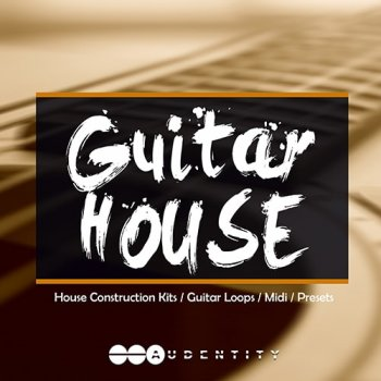 Сэмплы Audentity GUITAR HOUSE