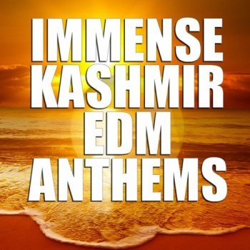 Сэмплы Immense Sounds Immense KASHMIR EDM Anthems