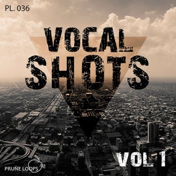 Сэмплы Prune Loops Vocals Shots Vol 1