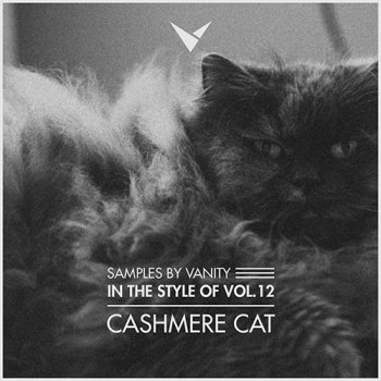 Сэмплы ударных - Samples by Vanity In The Style Of Vol 12 CASHMERE CAT