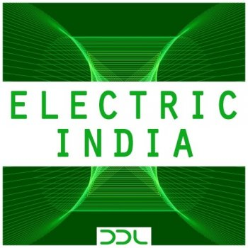 Сэмплы Deep Data Loops Electric India