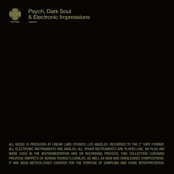 Сэмплы Adrian Younge Psych Dark Soul And Electronic Impressions