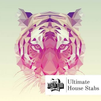 Сэмплы Rankin Audio Ultimate House Stabs