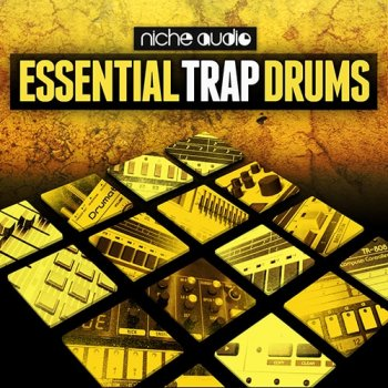 Сэмплы Niche Audio Essential Trap Drums (Ableton Live)