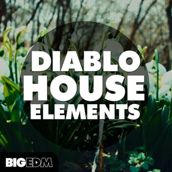 Сэмплы WA Production Diablo House Elements