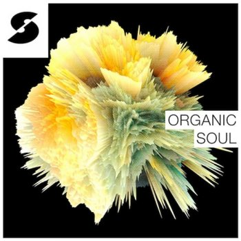 Сэмплы Samplephonics Organic Soul
