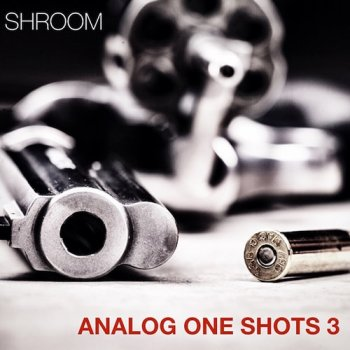 Сэмплы Shroom Analog One Shots Vol 3