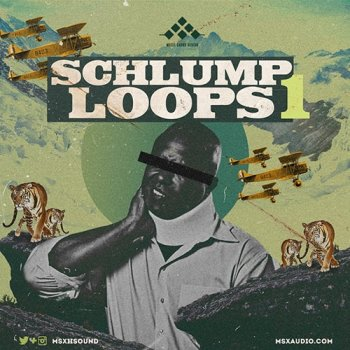 Сэмплы MSXII Sound Design Schlump Loops 1