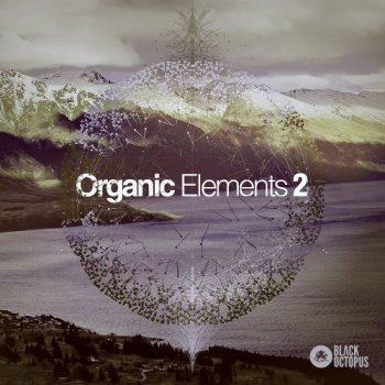 Сэмплы Black Octopus Sound Organic Elements 2